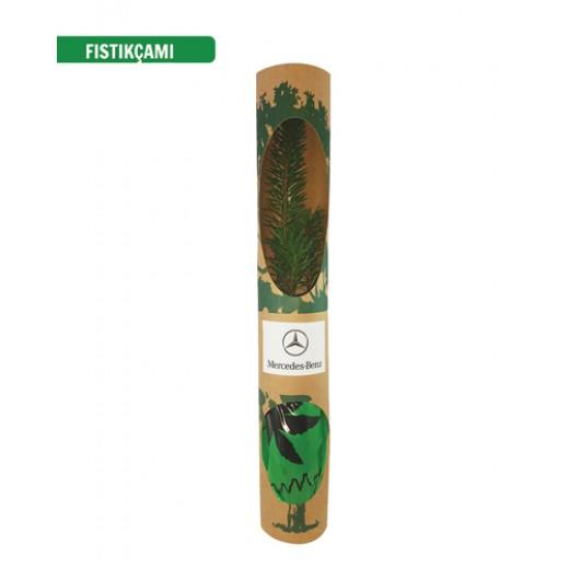 PFYK01 Kraft Kutu Fidan