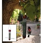 PFTA01 Plastik Tüp Canlı Ağaç Fidanı